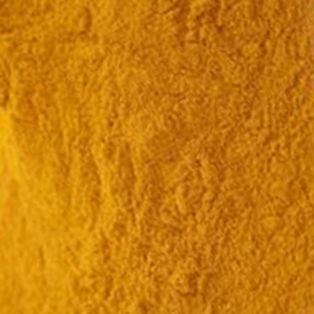 Phase Italia - Soluzioni per il Restauro - Curcuma - Pigmenti/Coloranti vegetali